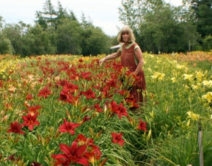 Alison Scott in a field of daylilies
